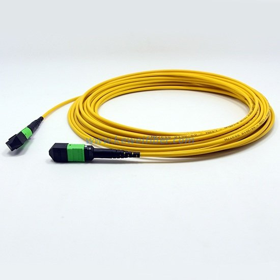 MTP-MTP trunk cable 12F/24F