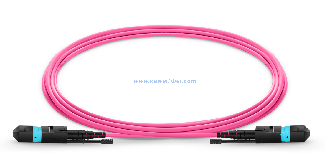 MTP Female to MTP Female 12 Fibers OM4 50/125 Multimode HD Trunk Cable, Polarity A, LSZH Bunch Pull tab type